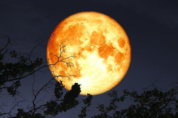 a lua de ouro
