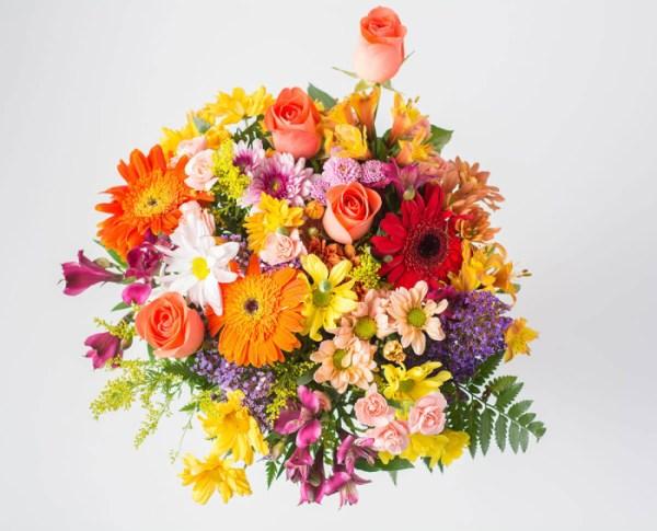 a mais bela flor