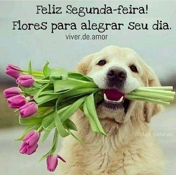 Feliz Segunda com flores