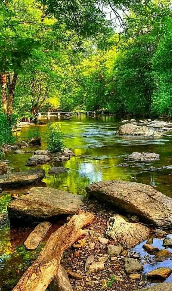 A natureza é muito bonita.