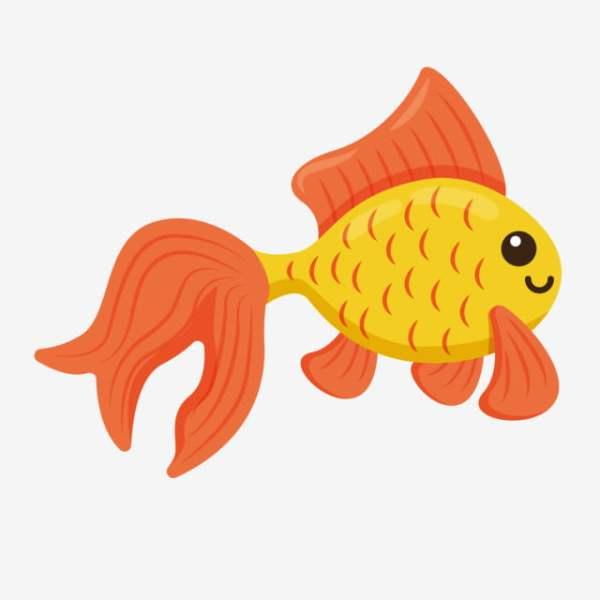 Imagem de peixinho.