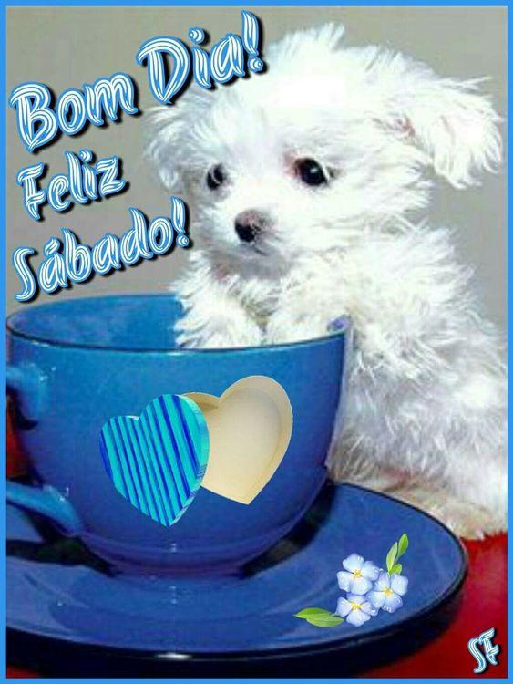 Feliz Sábado! Bom dia