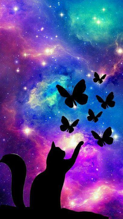 papel de parede gato com borboletas