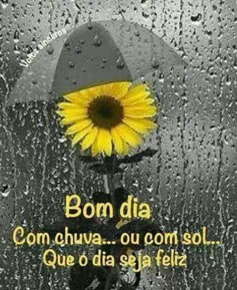 Mensagens bom dia com chuva