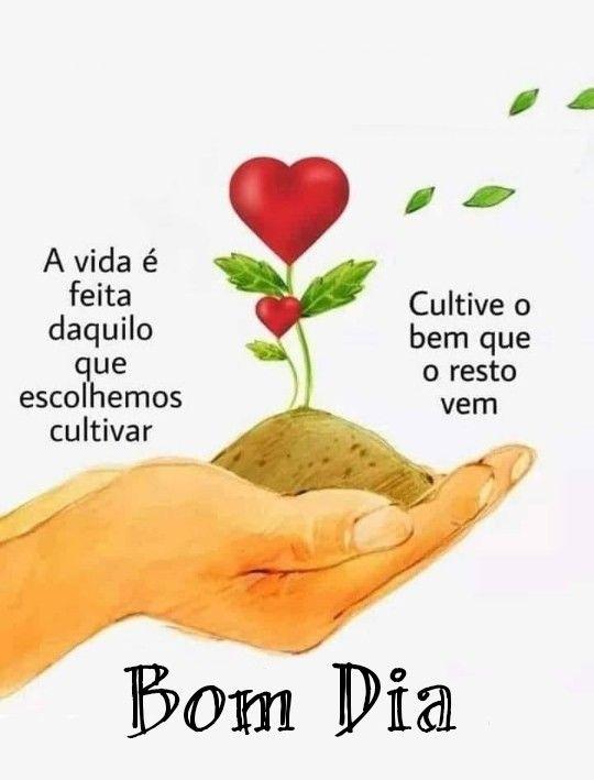 Bom dia cultive o bem