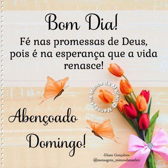 Bom dia com fé nas promessas de Deus