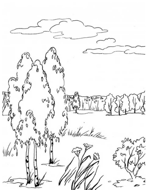 Desenho para colorir essa paisagem linda.