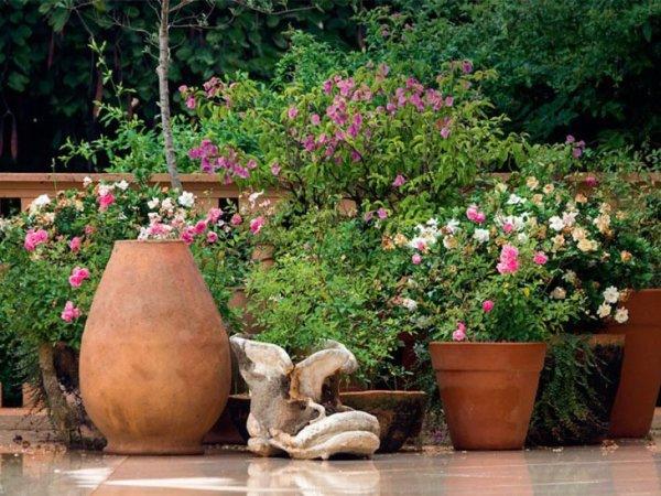jardim com flores surreal