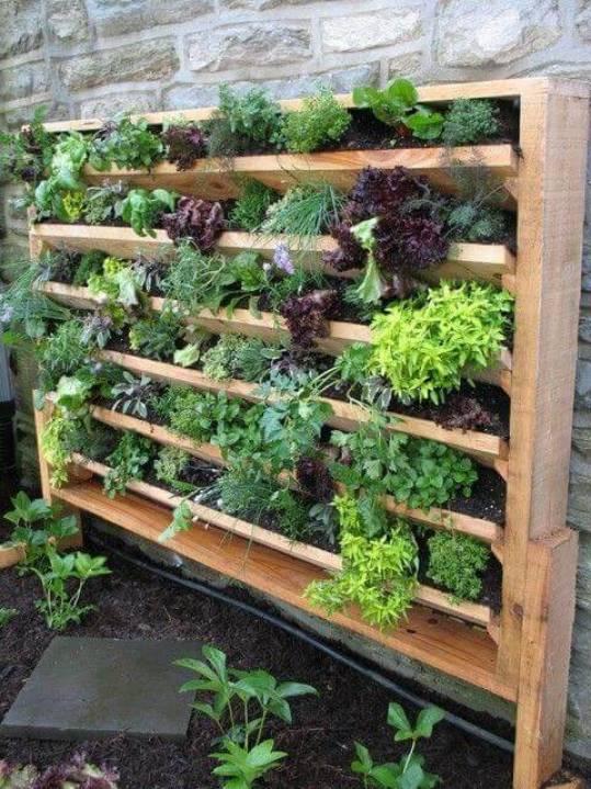 prático jardim com madeira