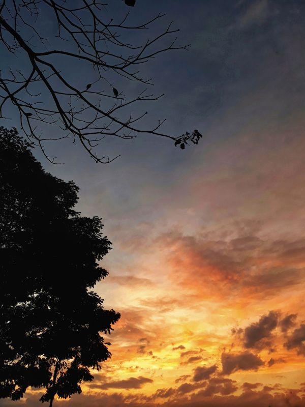 paisagem do céu fim tarde