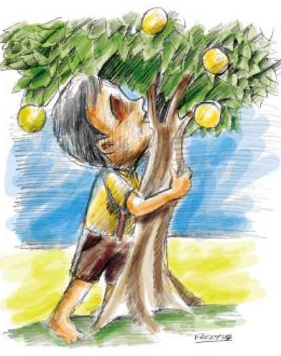 Imagem do menino no pé de laranja.