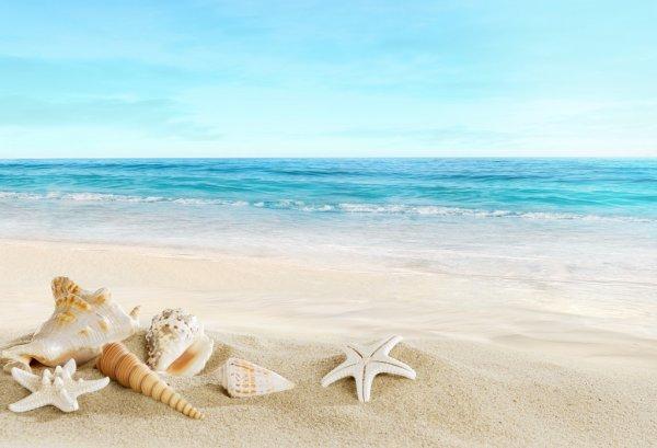 lindo mar da praia