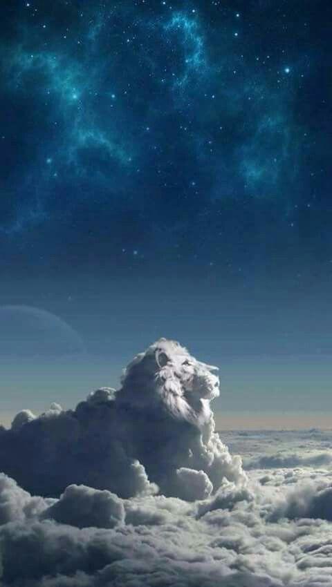 wallpaper leão de nuvem
