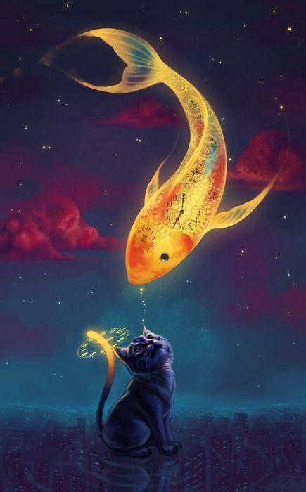 Papel de parede peixe e gato