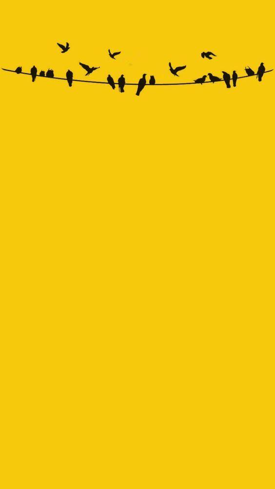 wallpaper liso amarelo com passáros