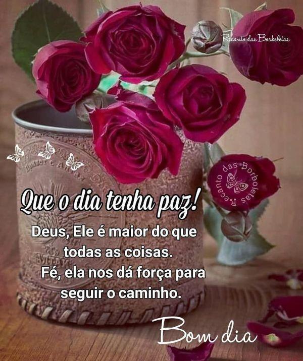 bom dia florido  com Deus