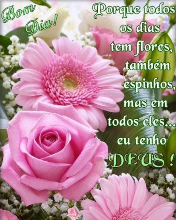 Bom dia com flores e Deus