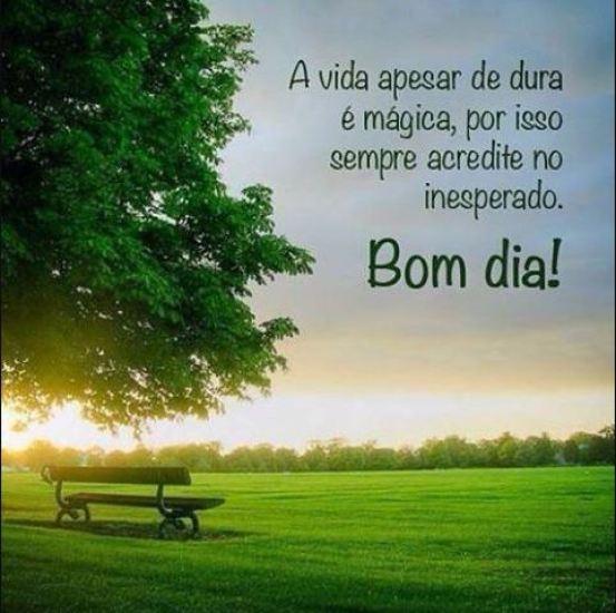 Bom dia lindo e feliz