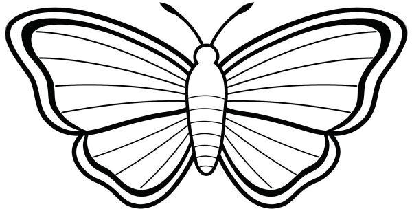 Imagens de borboletas linda para pintar