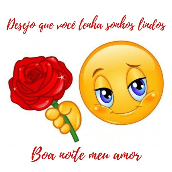 Emojis de boa noite amor com flores