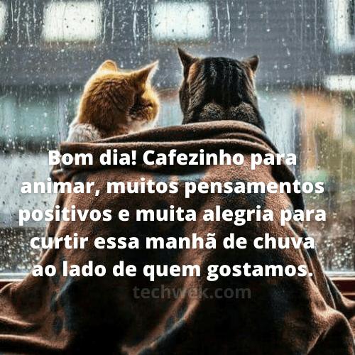 frases de bom dia com chuva ao lado de quem amamos