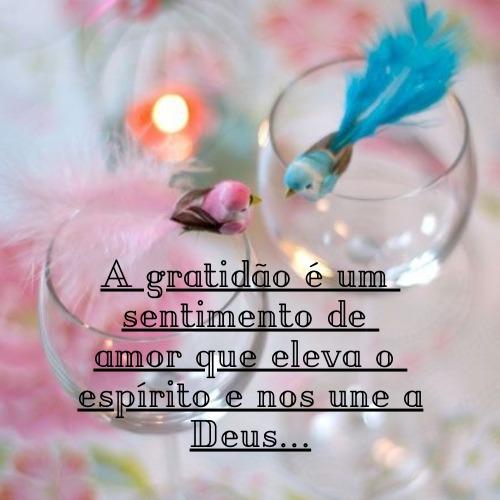 Frase com gratidão para agradecer a Deus