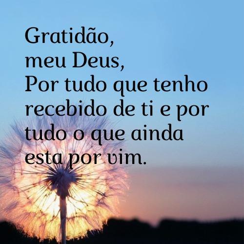 Frase cheia de gratidão para agradecer pelas graças alcançadas e recebidas