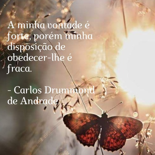 Frase de Carlos Drummond para se inspirar