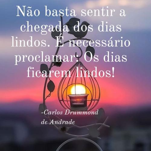 Frase de Carlos Drummond de Andrade para se aventurar