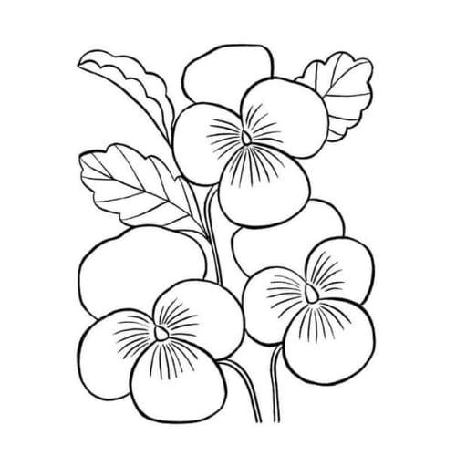 Desenhos de flores para colorir e impremir