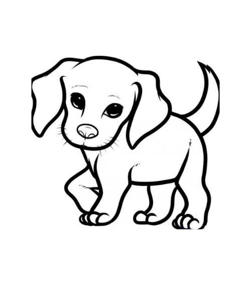 Desenho fofo de cachorro para imprimir e colorir