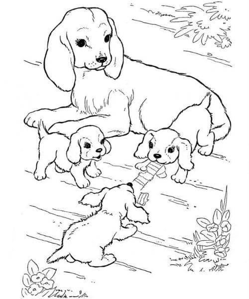 Imagem com desenho fofo de cachorro para pintar