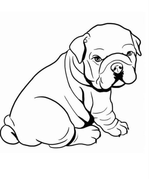 Desenho perfeito de cachorro para colorir