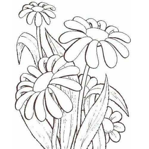 Imagem perfeita com desenho de flor cheia de carinho para imprimir e colorir
