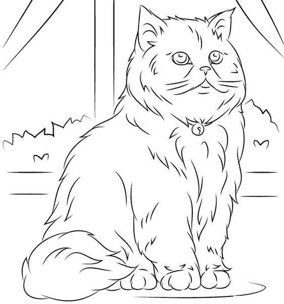 Desenhos de gatos para pintar casa
