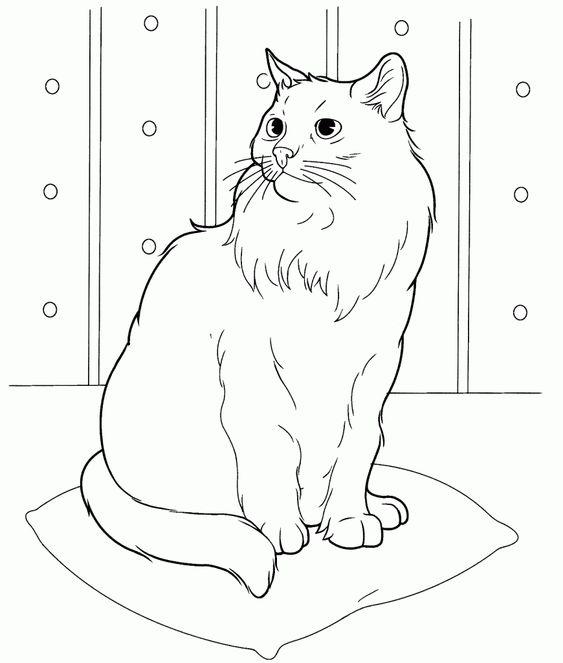 Desenhos de gatos para pintar radical