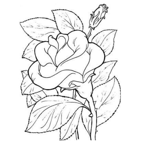 Imagem tumblr de desenho de flor linda para colorir e imprimir