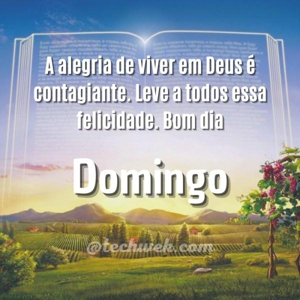 Frases de Bom dia domingo com Deus