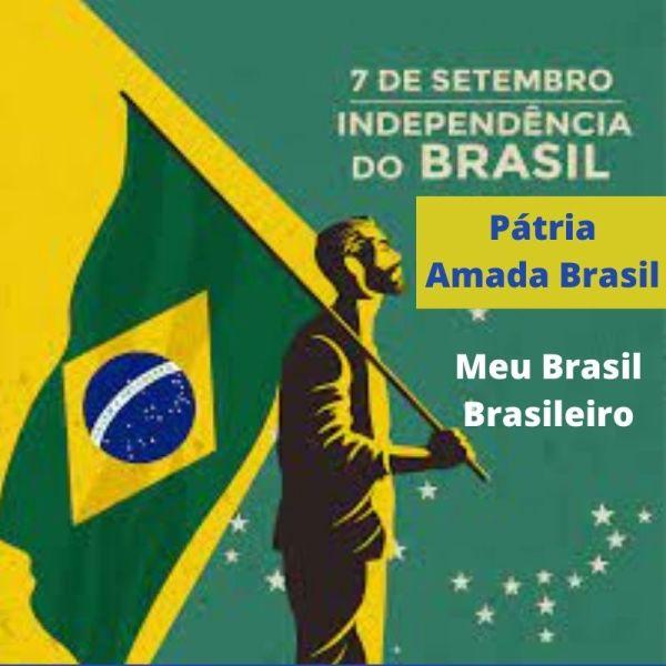viva o Brasil 07 de setembro