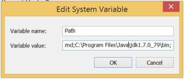 edit the path system variable