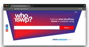 what-wordpress-themes-and-plugin-a-website-is-using