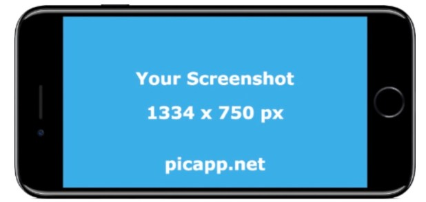 PicApp