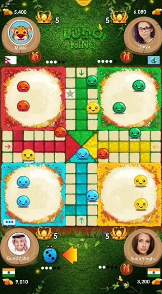 ludo king in action