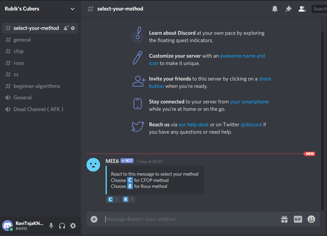 Testing Mee6 bot