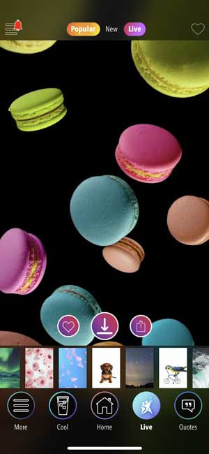 kappboom app that sets live wallpaper on iPhone
