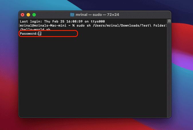 enter password for sudo command