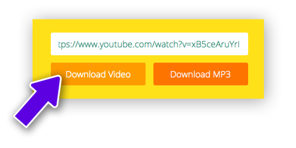 How To Download Your Favorite Online Videos Through 9xbuddy 7