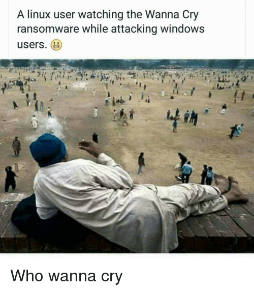 Meme about malware affecting Windows users and not Linux users