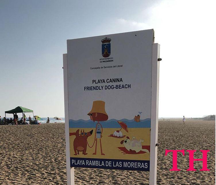 Cartel playa canina