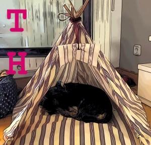 DIY: Cómo hacer un Tipi a tu perro